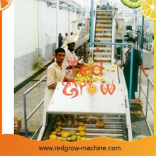 Mango Fruit Surf Washer Machine