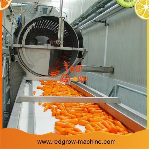 Carrots Washing Machine
