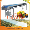 Belt Conveyor Machine for Fruit and Vegetable Processing Line