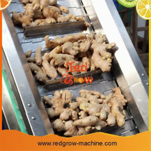 Curcumin Making Machine