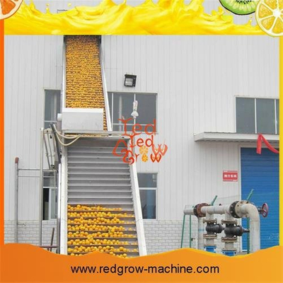 Orange Processing Machine