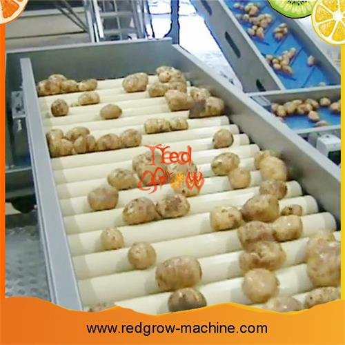 Potato Processing Machine