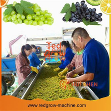 Belt Type Fruit Sorting Conveyor Machine